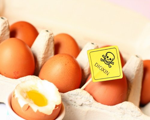 Eggs contaminated with Dioxin have been marketed and must be withdrawn.