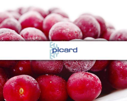 Picard et PLM Lascom