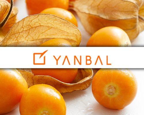 Lascom's PLM solution at Yanbal International